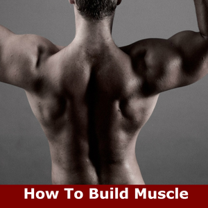 Health & Fitness - How To Build Muscle: Learn How to Build Muscle and Strength - Lim Ching Kong