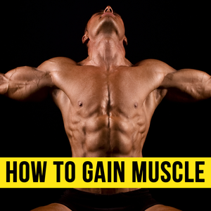Health & Fitness - How to Gain Muscle From Basics - Learn the Tricks - sathish bc