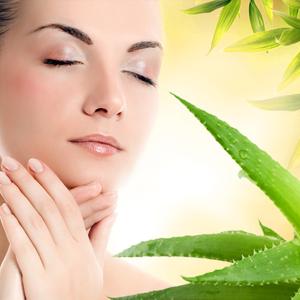 Health & Fitness - Aloe Vera - A Miracle Plant - sathish bc