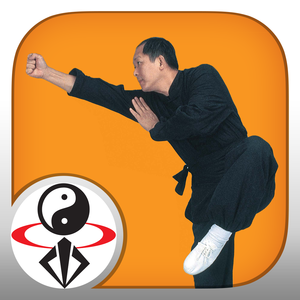 Health & Fitness - Shaolin Kung Fu Fundamental Training by Dr. Yang