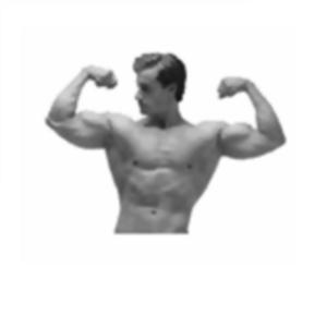Health & Fitness - Army Body Fat Percentage Calculator for iPad - Cellica Corporation