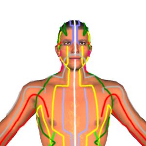 Health & Fitness - Health by Acupressure - 3D - Aayoga Navelkar