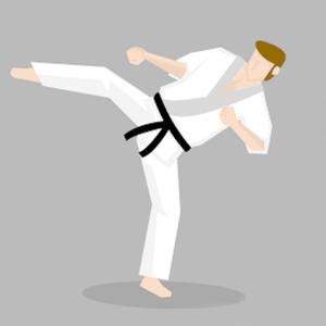 Health & Fitness - Learn Taekwondo: Kicks & Punches - DWNLD