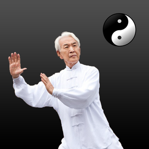 Health & Fitness - Tai Chi Guide - Everything You Need To Know About Tai Chi ! - nipon phuhoi