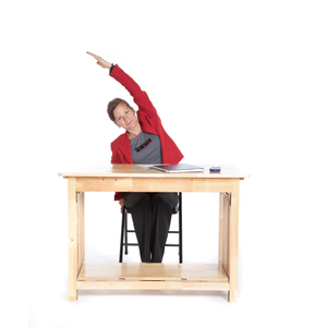 Health & Fitness - Desk Yoga - Capital Yoga Publishing Corp