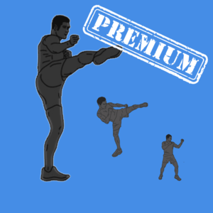 Health & Fitness - Kickboxing Workout Premium Version - Cardio interval routine to improve your fighting skills - Laurentiu Gheorghisan