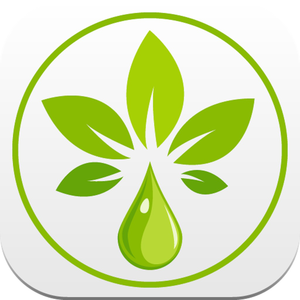 Health & Fitness - Essential Oils Reference Guide - Lime Works