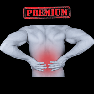 Health & Fitness - Physical Back Workout (Premium) - Heal Your Back Pain With This Efficient Training Routine - Alexandru Paduraru