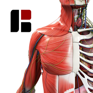 Health & Fitness - BioDigital Human: 3D Anatomy Explorer - BioDigital