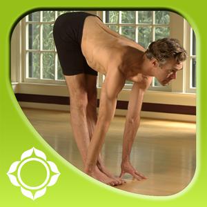 Health & Fitness - Ashtanga Yoga - Introduction - Richard Freeman - Sounds True