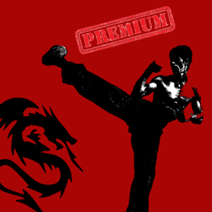 Health & Fitness - 30 Min Martial Arts Workout: Fist of Fury Training Edition (Premium) - Alexandru Paduraru