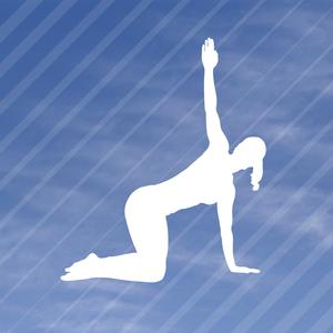 Health & Fitness - My Pilates Guru: Pilates exercises for fitness