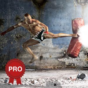 Health & Fitness - Kickboxing Workout Challenge PRO - Cardio Training - Cristina Gheorghisan