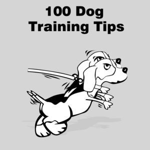 Health & Fitness - All 100 Dog Training Tips - Revolution Games