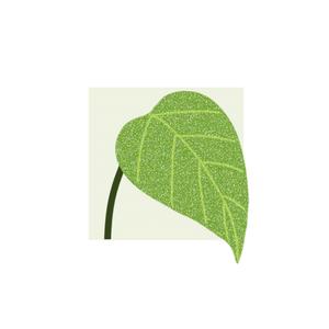 Health & Fitness - Inner Garden - Li Yang