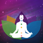 Health & Fitness - Insight Chakra Scan - Possibility Wave
